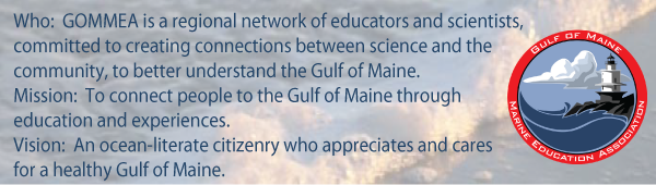GOMMEA's mission is to connect people to the Gulf of Maine through education and experiences.