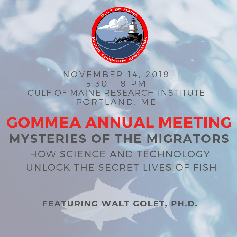 Events – GOMMEA